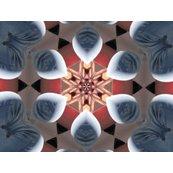 Rrrrimg_1098_kaleidescope.2.40.inch._shop_thumb