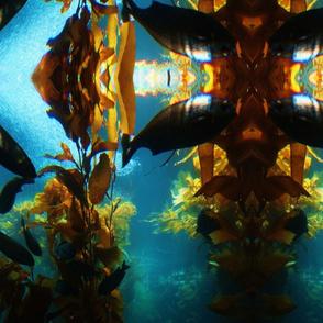 fish__27_