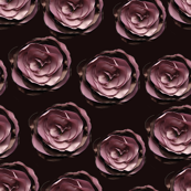roses on dark