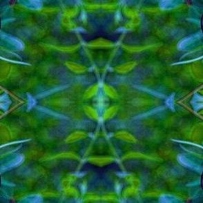 blue butterfly 2