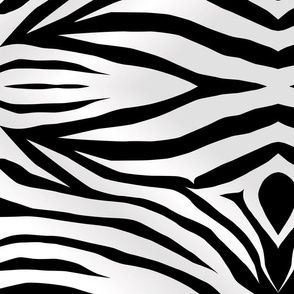 zebra-stripes-wall decal