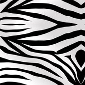 Rrrrzebra-stripes-wallpaper-i18_shop_thumb