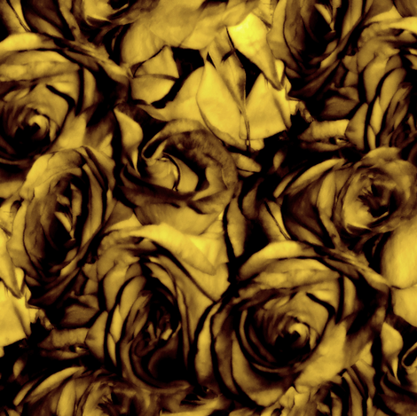 Golden Roses fabric by peacoquettedesigns on Spoonflower - custom fabric
