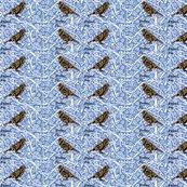 Rbird_duet_2_ed_ed_shop_thumb