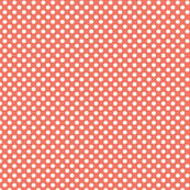Coral Polka