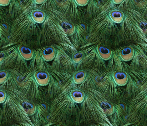 Tale of the Peacock Tail fabric by peacoquettedesigns on Spoonflower - custom fabric