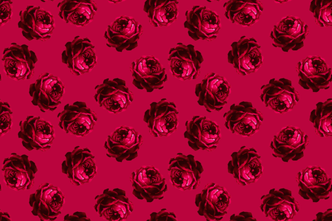 Rose1_left_side_of_swatch fabric by joanmclemore on Spoonflower - custom fabric