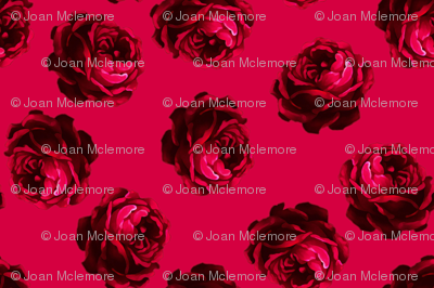 Roses_2_right_side_of_swatch
