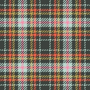Plaid19