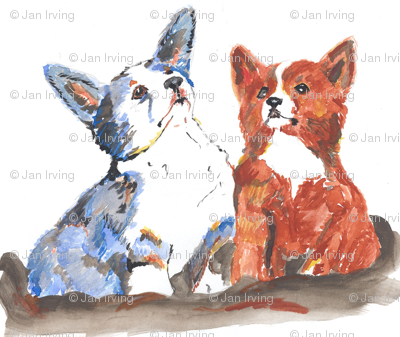 Welsh Corgi Cardigan and Pembroke puppies