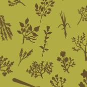 Grow Great Grub - Olive & Brown