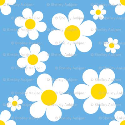 Sweetie Pie Daisy - Blue