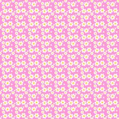 Rfillpinkdaisy_shop_thumb
