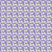 Rfillpurpledaisy_shop_thumb