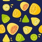 Citrus-darkblue-01_shop_thumb