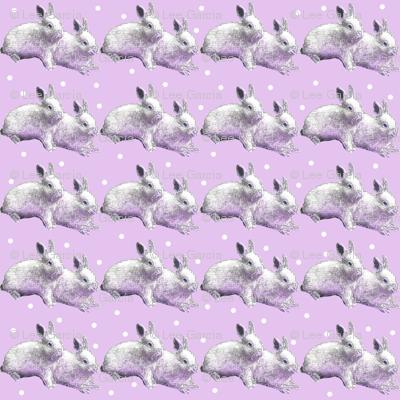 Snow_Bunnies