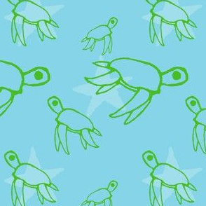 turtle superstars!