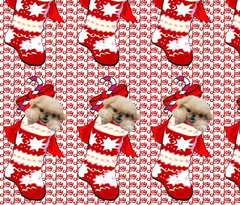 1655495_rpekingese_in_stocking_shop_preview