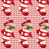 Pekingese Puppy In Christmas Stocking fabric