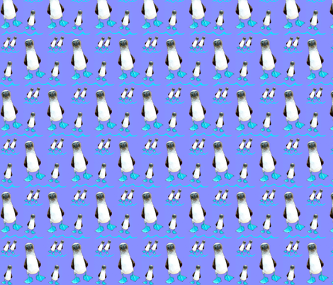 Happy Booby Dance fabric by robin_rice on Spoonflower - custom fabric