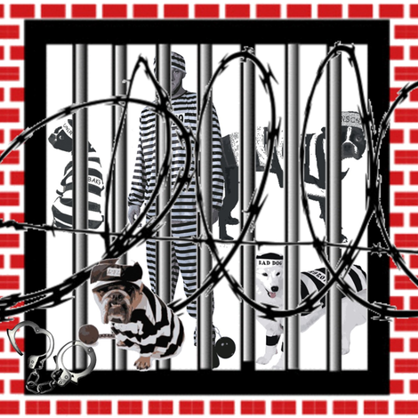 JAIL BIRDS fabric by bluevelvet on Spoonflower - custom fabric