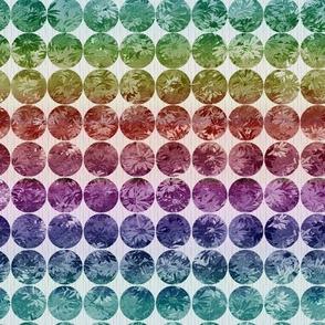 Daisy dots in rainbow ombre