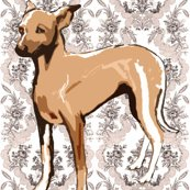 Rrrgrethound_puppy_brocade3_shop_thumb