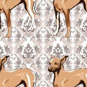brocaded greyhound puppy fabric