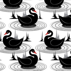 Black Swans