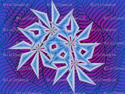 iced stars