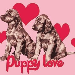 Irish Setter Puppies and Hearts