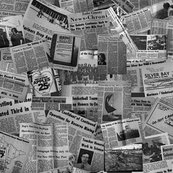 Silver_bay_paper_larger_b___w_shop_thumb