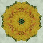 Ryellow_lily_quilt_shop_thumb