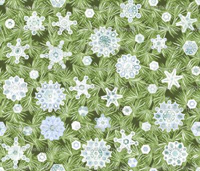 Translucent Snowflakes