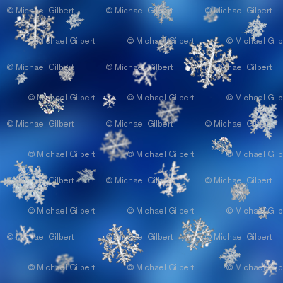 Rrsnowflake6x6a300_preview