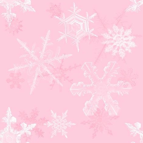 Pink Frost fabric by shirlene on Spoonflower - custom fabric