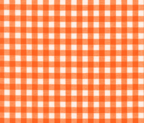BURNT ORANGE GINGHAM fabric by bluevelvet on Spoonflower - custom fabric