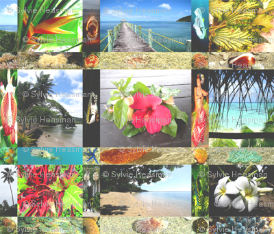 Fiji_Memory_Quilt