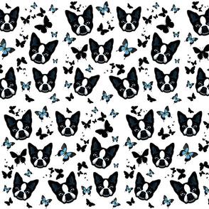 DOGS N BUTTERFLIES