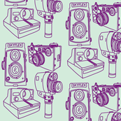 Cameras Mint Green & Grape Purple