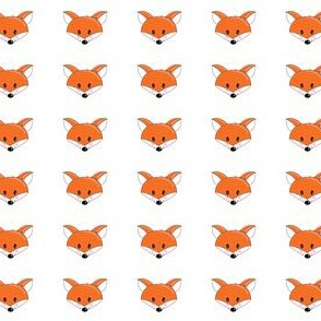 Rosy Cheeked Fox