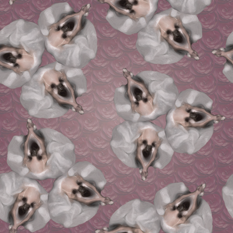ballerinas on roses fabric by kociara on Spoonflower - custom fabric