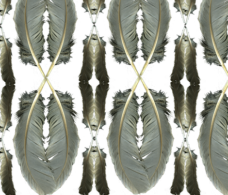 Feathers fabric by daryl_stoll on Spoonflower - custom fabric