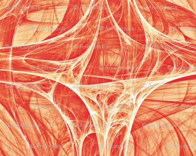 Cosmic Web 14