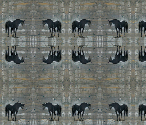 Shadow fabric by rosalind_san_felipe on Spoonflower - custom fabric