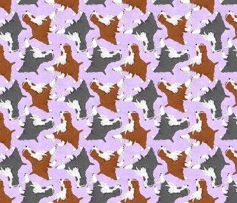 Trotting Springer Spaniels - lavender