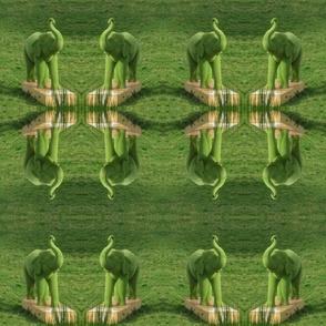 Jolly Green Elephant