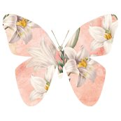 Md_butterfly_peach_lilies_shop_thumb