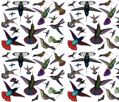 Vintage Hummingbirds fabric by pencreations on Spoonflower - custom fabric