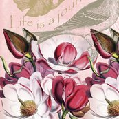 Md_romantic_pink_magnolia_with_bird_2_cr_shop_thumb